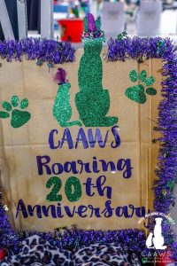 CAAWS-mystic-krewe-of-mutts_15