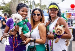 CAAWS-mystic-krewe-of-mutts_16