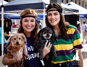 volunteers at the krewe of mutts