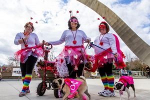 CAAWS-mystic-krewe-of-mutts_5