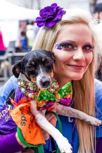 CAAWS-mystic-krewe-of-mutts_7