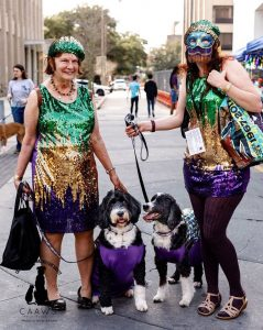CAAWS-mystic-krewe-of-mutts_8